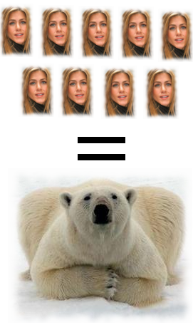 9 Jennifer Aniston per un orso polare