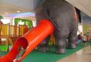 Scivola fuori.... dall'elefante ;)