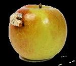 Mela-con-baco